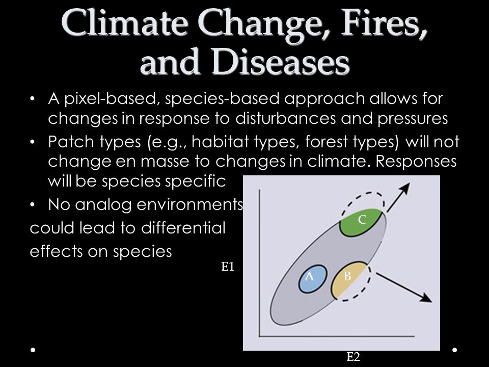 Climate Change, Fires, and Diseases