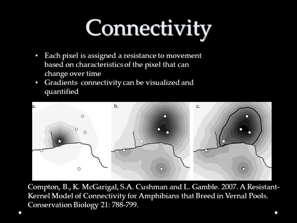 Connectivity Each pixel is assigned a resistance to movement based on characteristics of the pixel that can change over time.