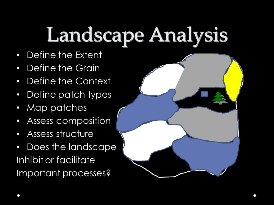 Landscape Analysis Define the Extent Define the Grain
