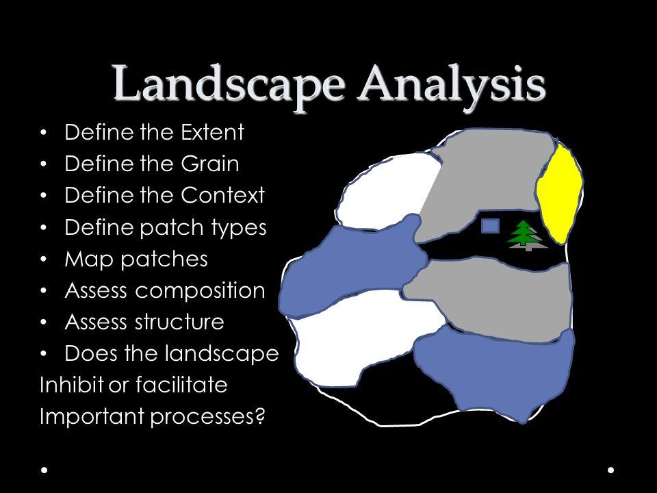 Landscape Analysis Define the Extent Define the Grain