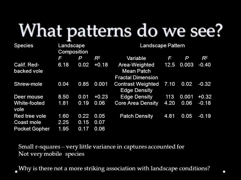 What patterns do we see Species. Landscape Composition. Landscape Pattern. F. P. R2. Variable.