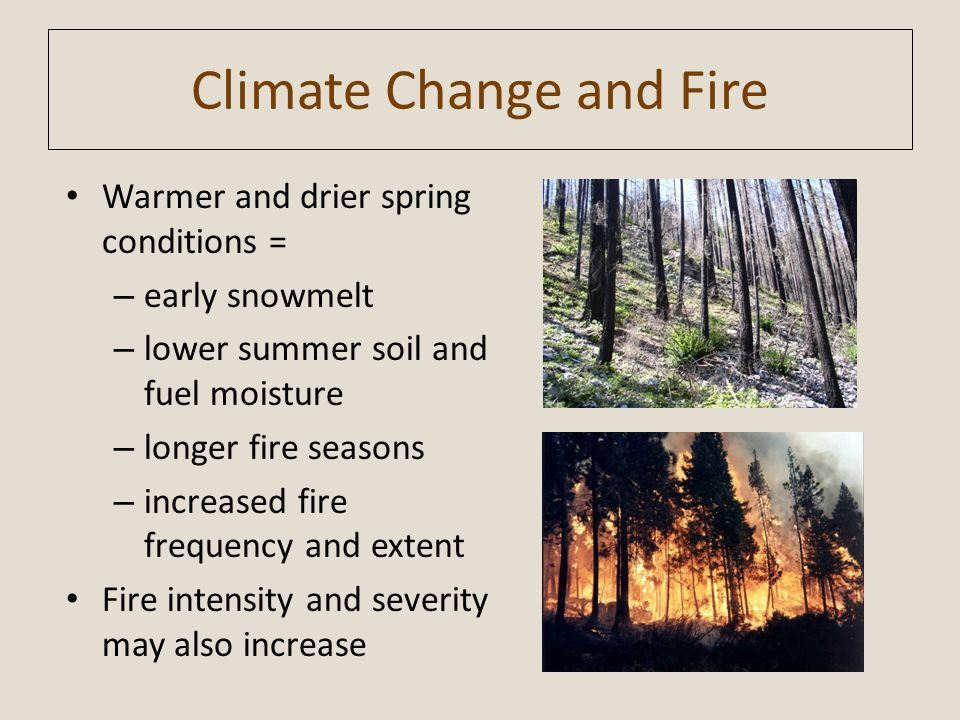 Climate Change and Fire