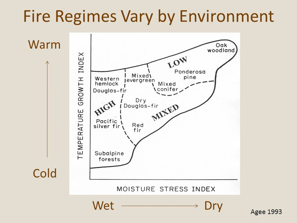 Fire Regimes Vary by Environment
