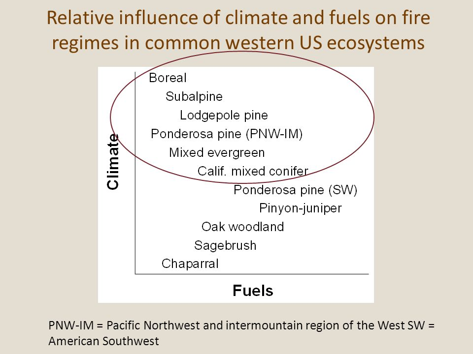 Relative influence of climate and fuels on fire regimes in common western US ecosystems