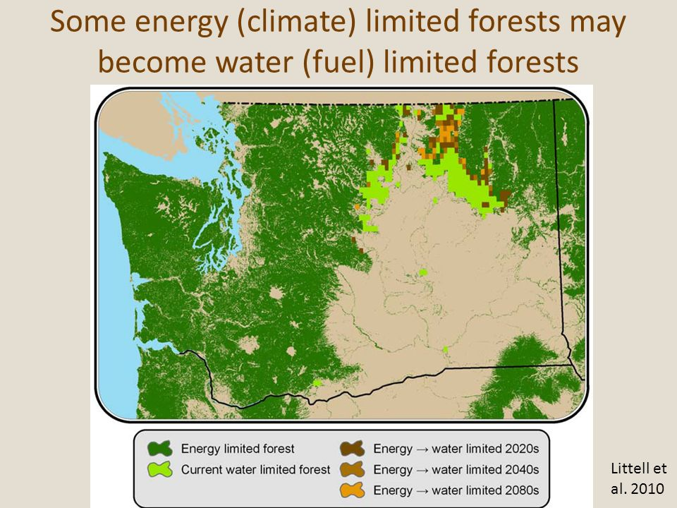 Some energy (climate) limited forests may become water (fuel) limited forests
