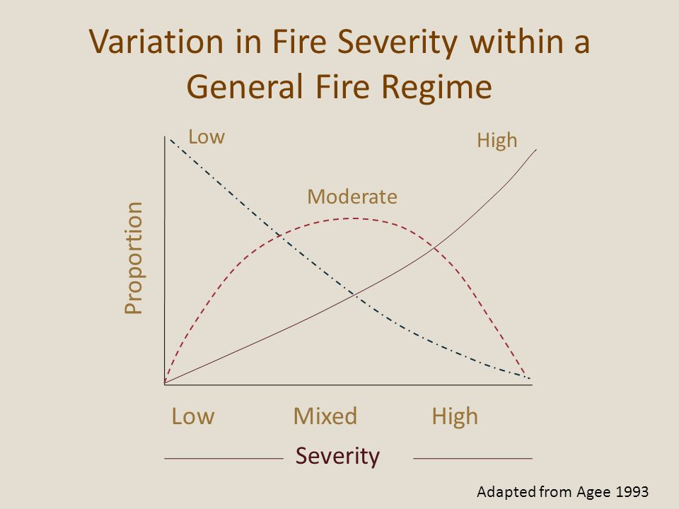 Variation in Fire Severity within a General Fire Regime