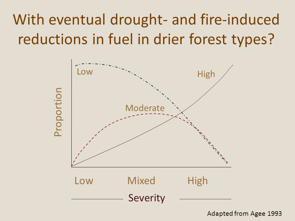 With eventual drought- and fire-induced reductions in fuel in drier forest types