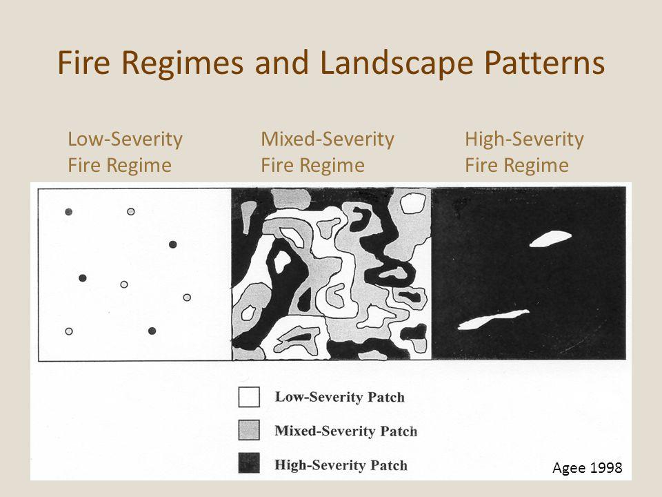 Fire Regimes and Landscape Patterns