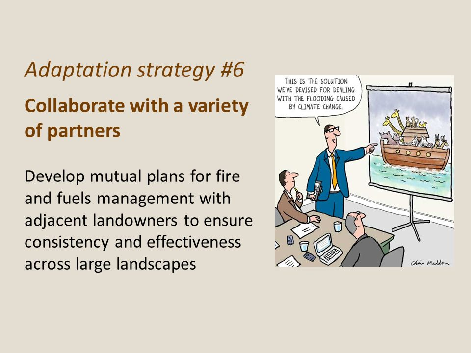 Adaptation strategy #6 Collaborate with a variety of partners