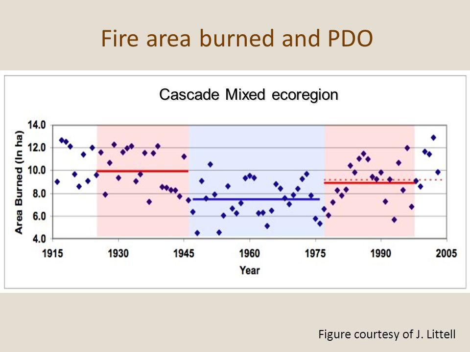 Cascade Mixed ecoregion
