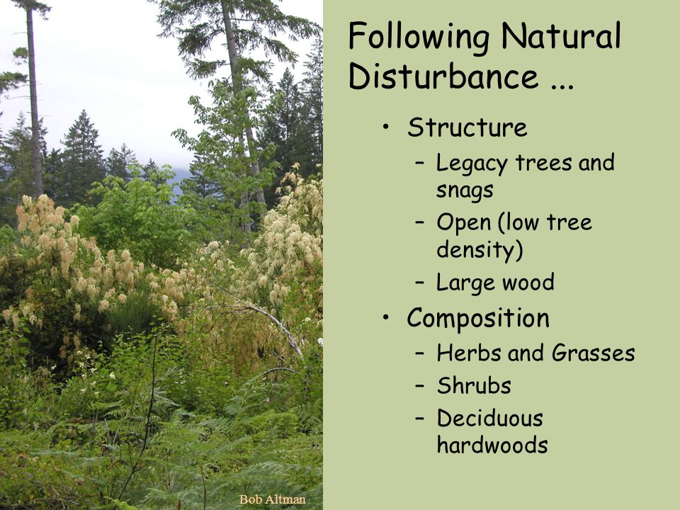 Following Natural Disturbance ...