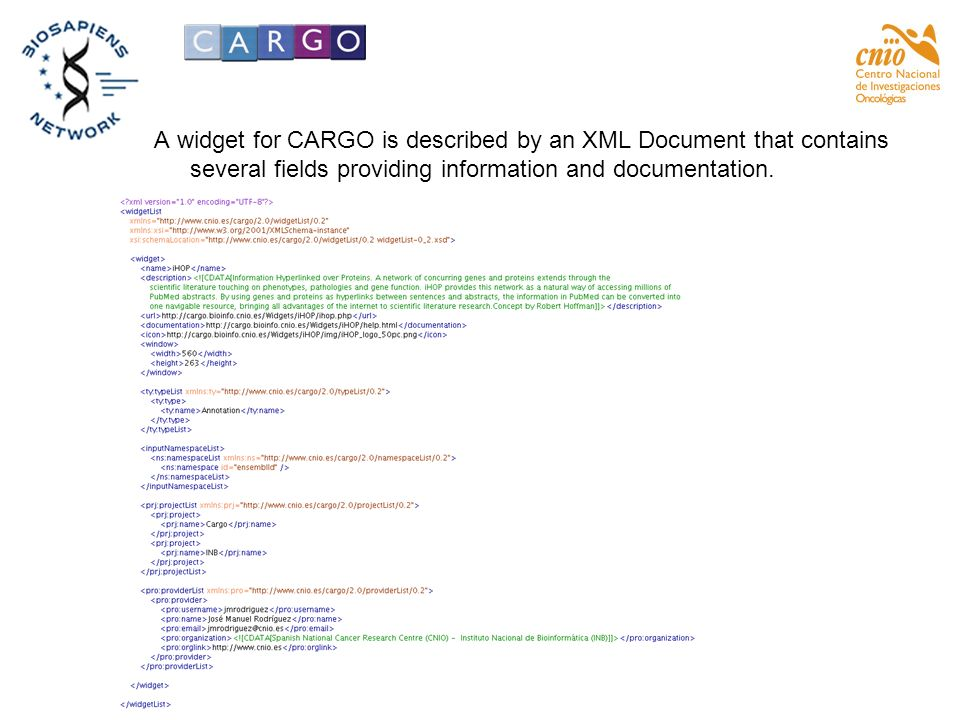 A widget for CARGO is described by an XML Document that contains several fields providing information and documentation.