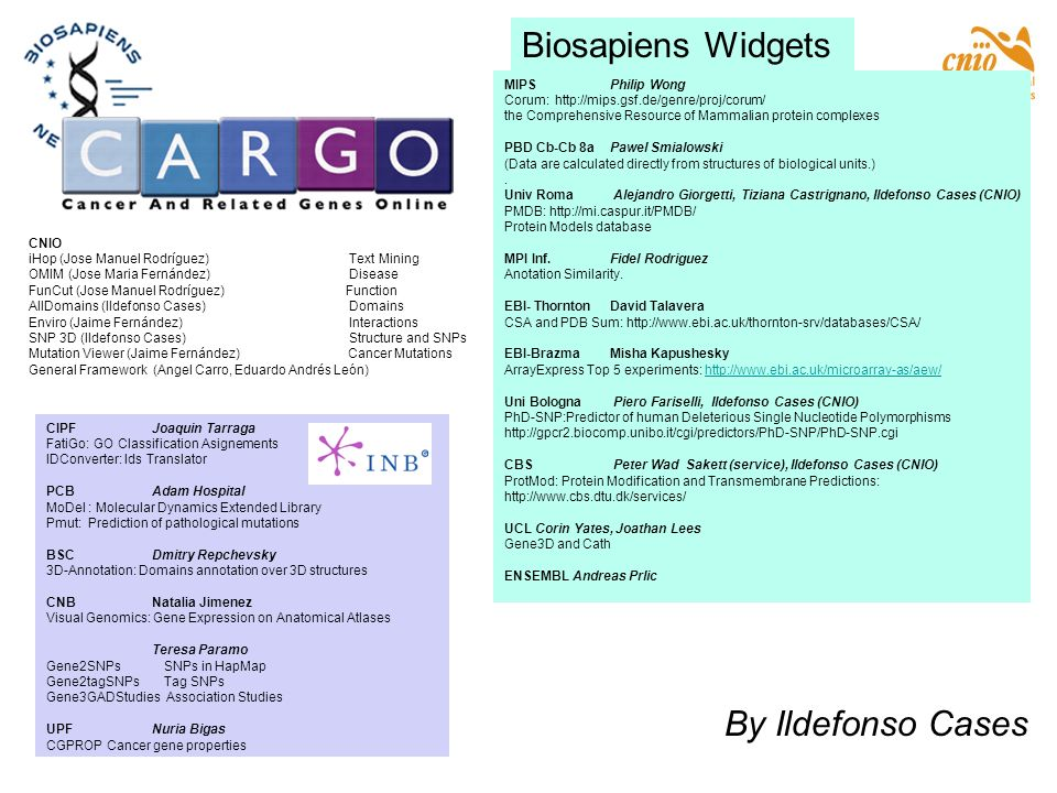 Biosapiens Widgets By Ildefonso Cases MIPS Philip Wong