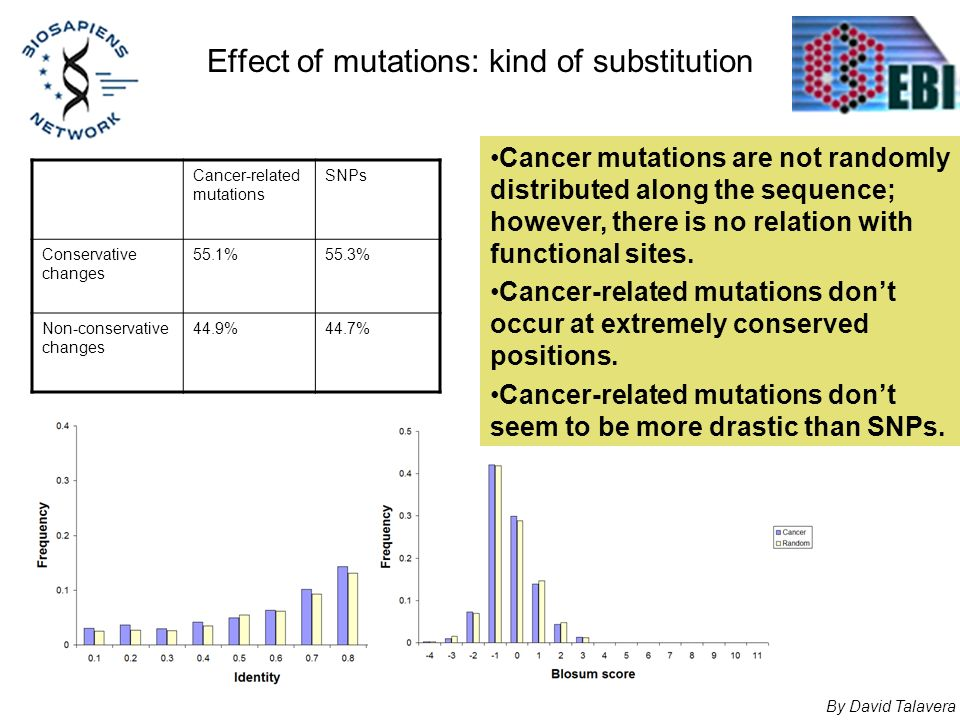 Effect of mutations: kind of substitution