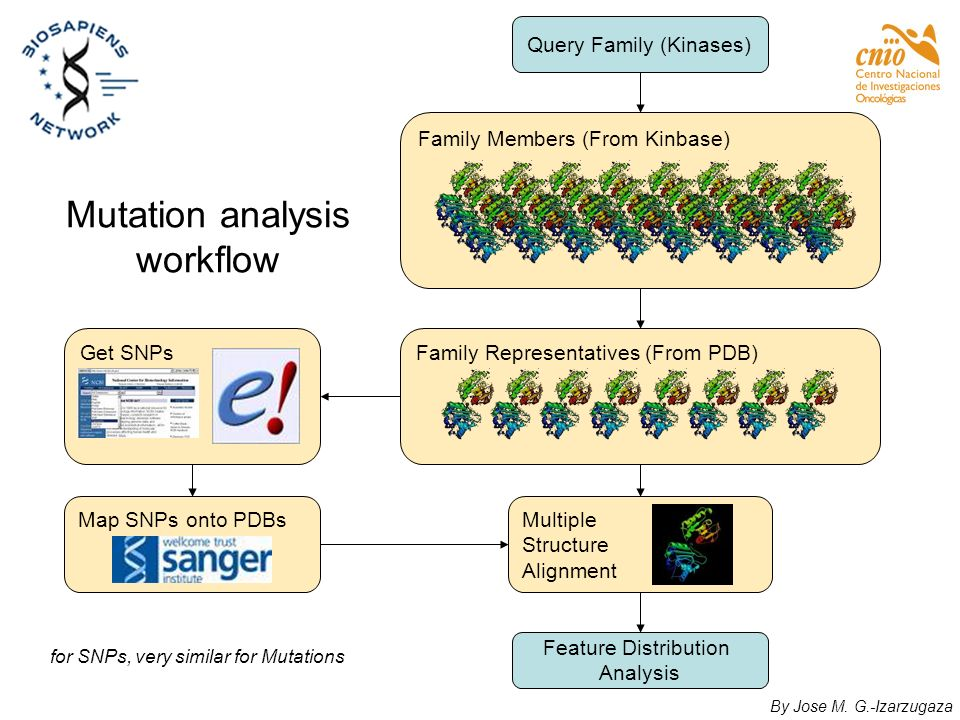 Mutation analysis workflow
