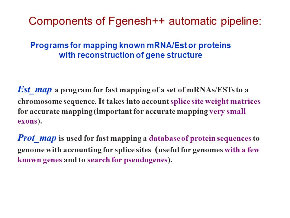 Components of Fgenesh++ automatic pipeline: