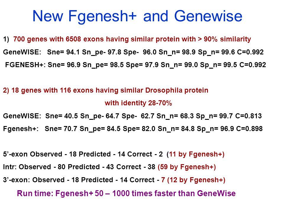New Fgenesh+ and Genewise