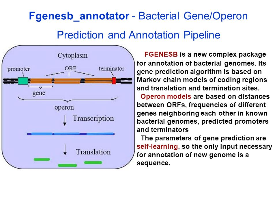 Fgenesb_annotator - Bacterial Gene/Operon Prediction and Annotation Pipeline