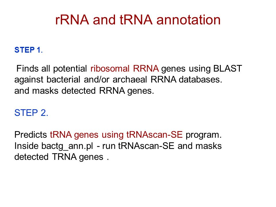 rRNA and tRNA annotation