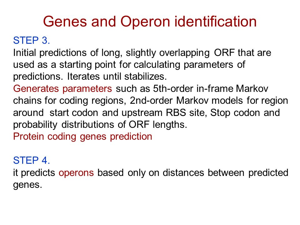 Genes and Operon identification