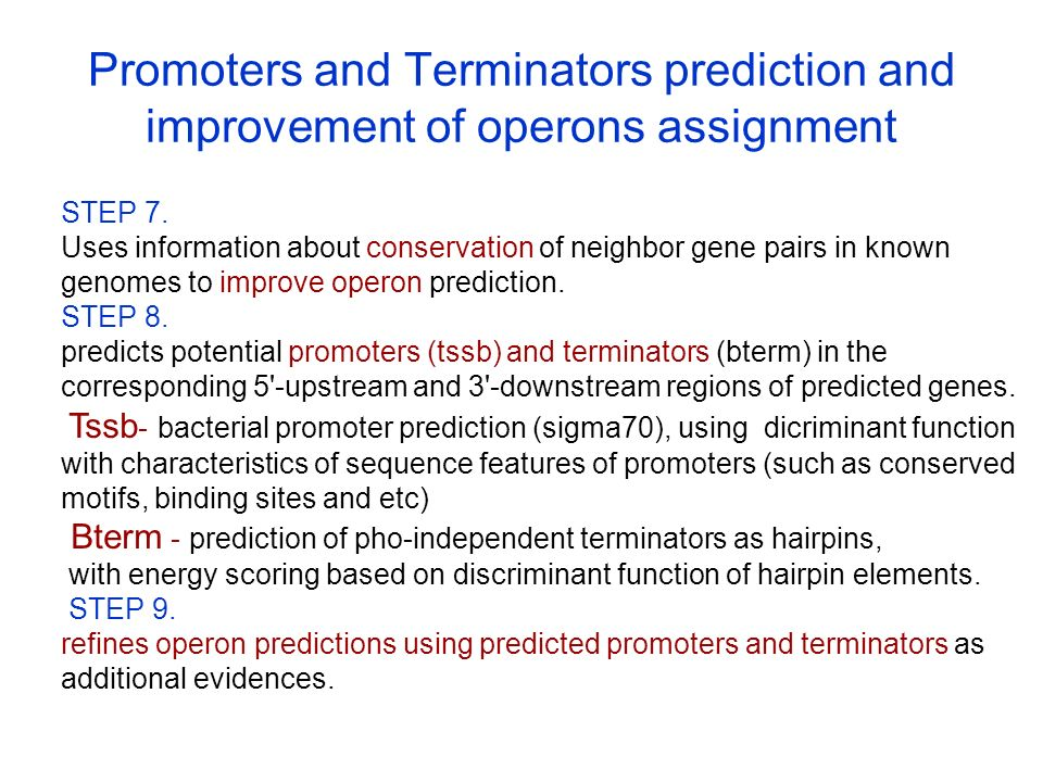 Promoters and Terminators prediction and improvement of operons assignment