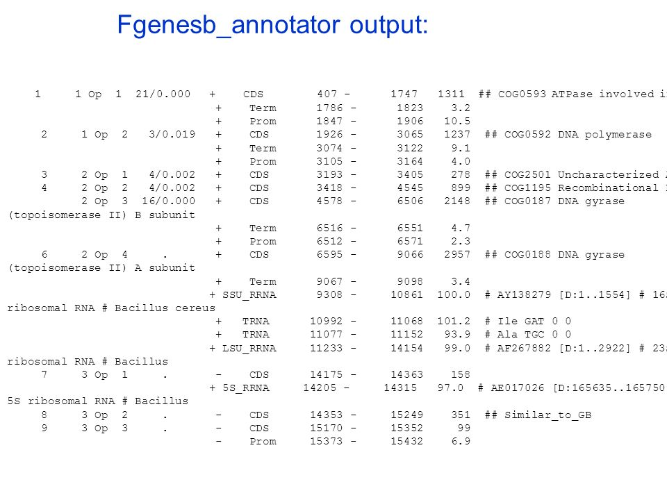 Fgenesb_annotator output: