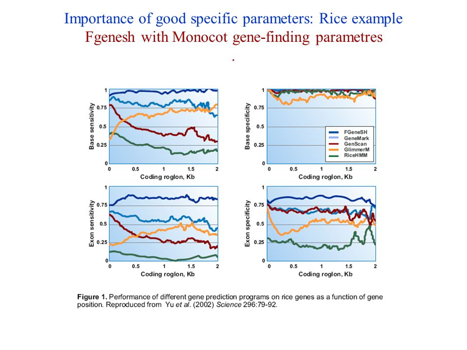 Importance of good specific parameters: Rice example Fgenesh with Monocot gene-finding parametres .