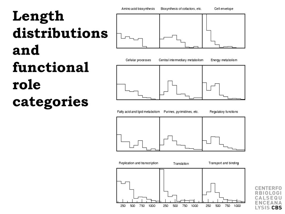 Length distributions and functional role categories