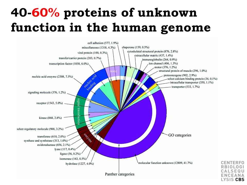 40-60% proteins of unknown function in the human genome