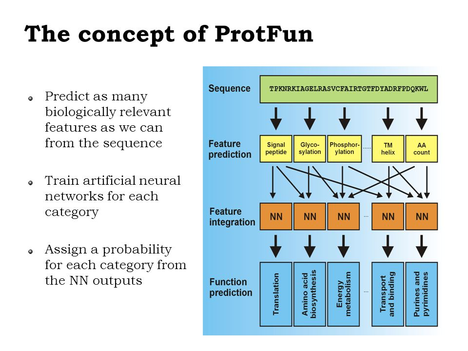 The concept of ProtFun Predict as many biologically relevant features as we can from the sequence.