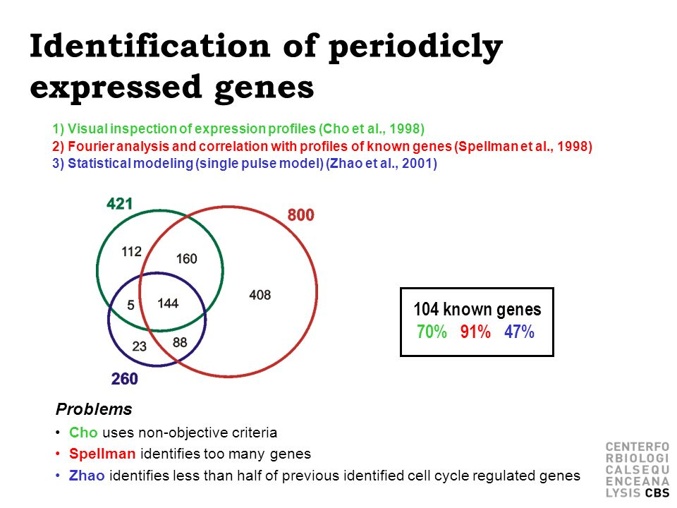 Identification of periodicly expressed genes