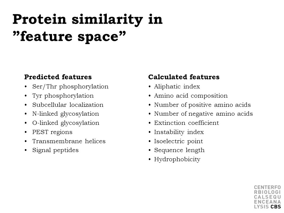 Protein similarity in feature space