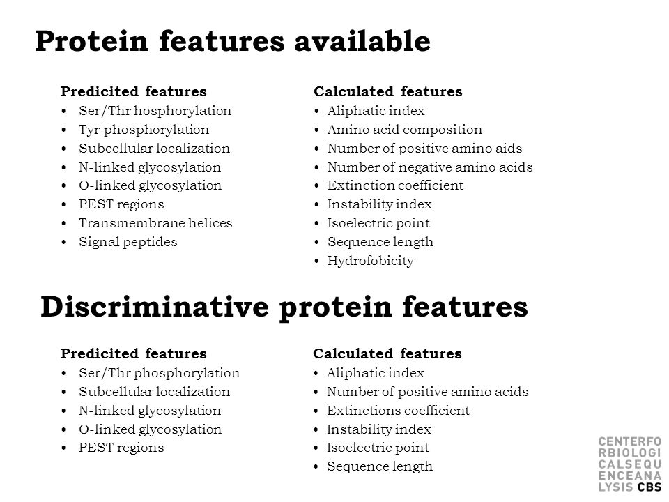Protein features available