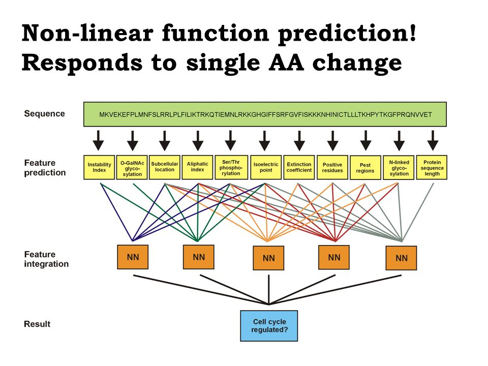 Non-linear function prediction! Responds to single AA change