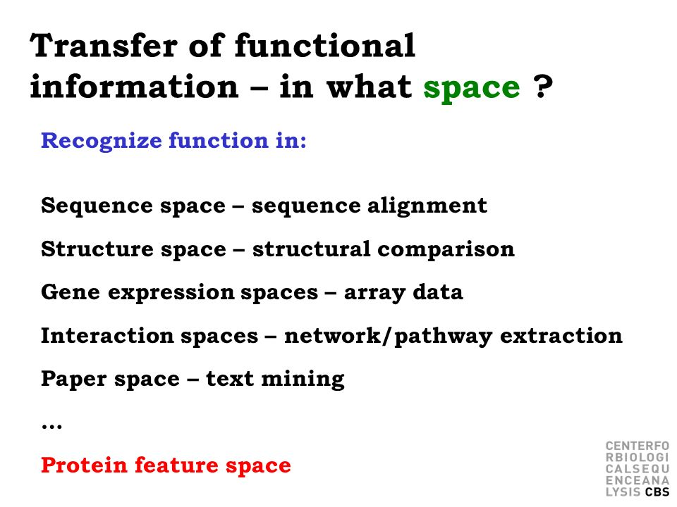 Transfer of functional information – in what space