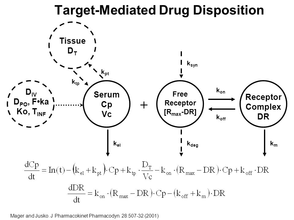 Target-Mediated Drug Disposition