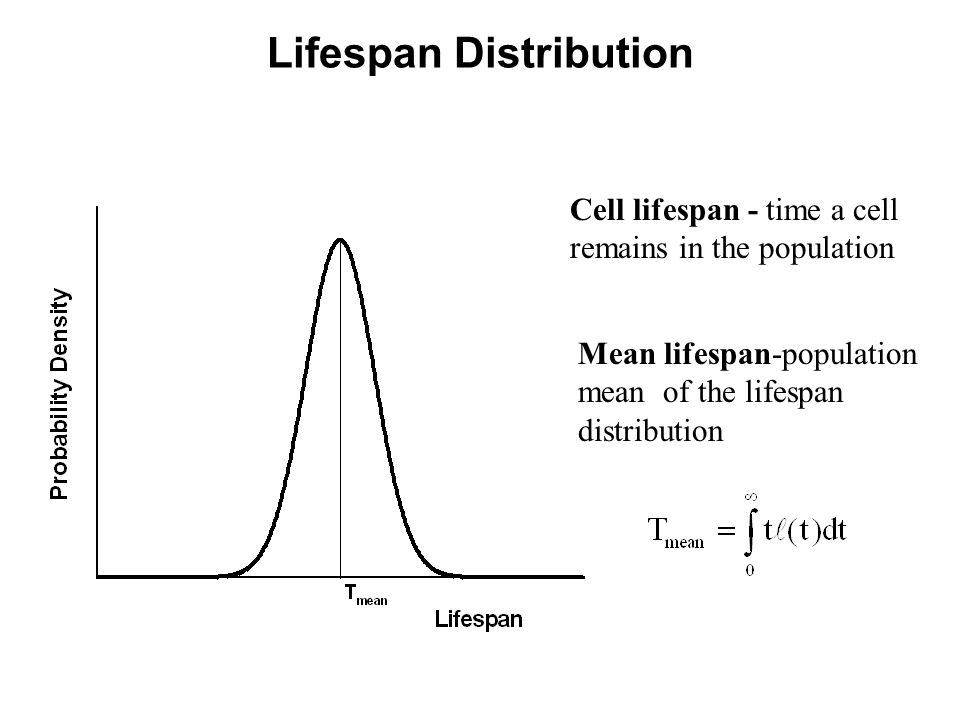 Lifespan Distribution