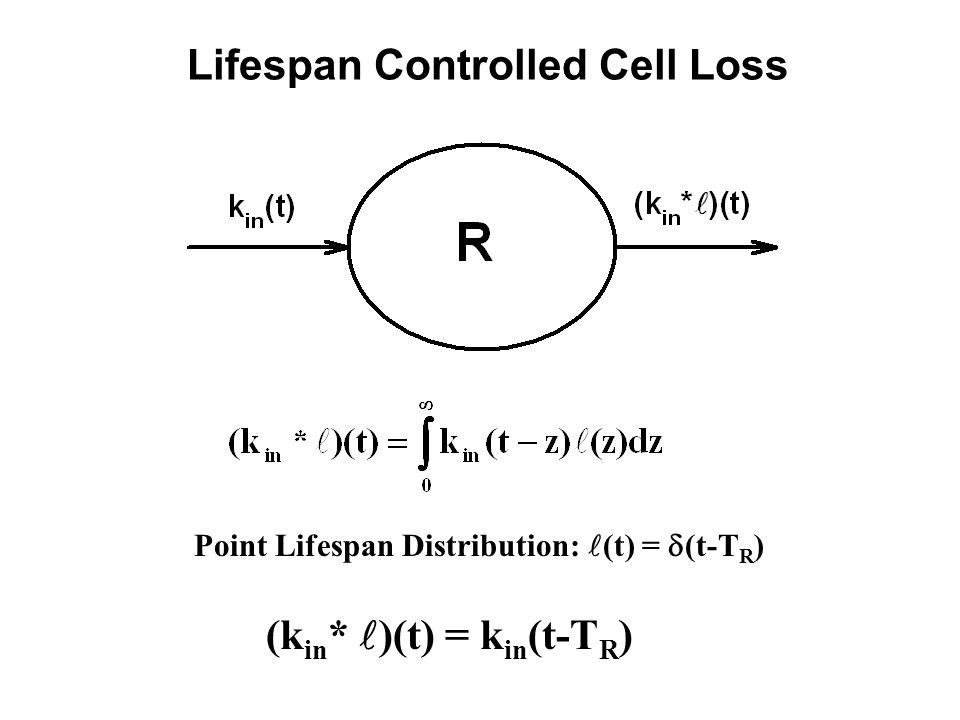Lifespan Controlled Cell Loss