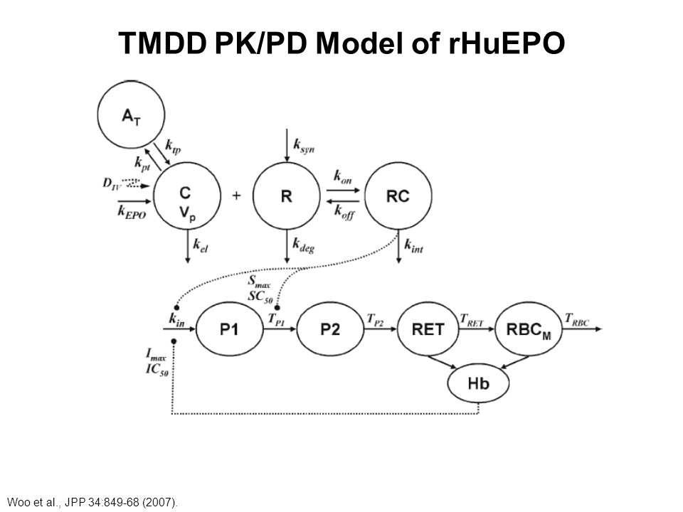 TMDD PK/PD Model of rHuEPO