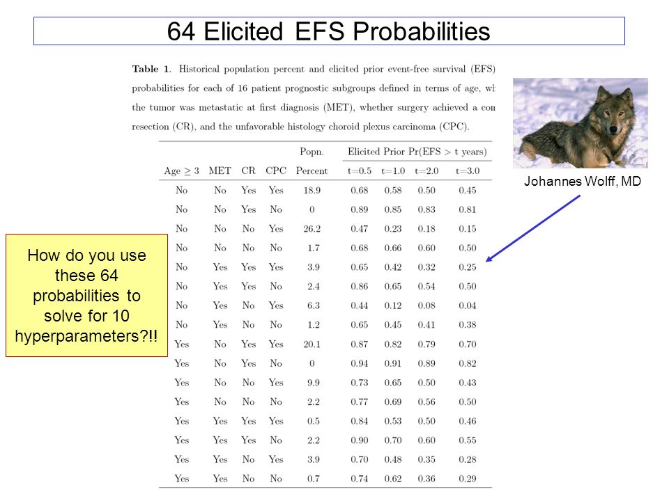 64 Elicited EFS Probabilities