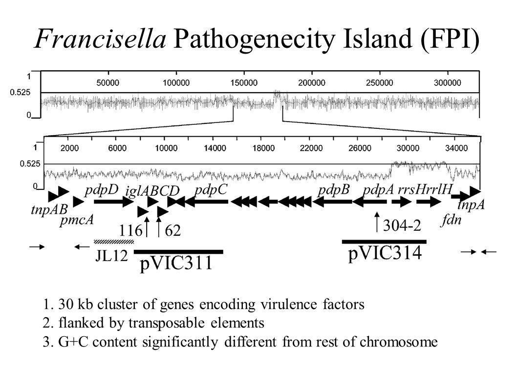 Francisella Pathogenecity Island (FPI)