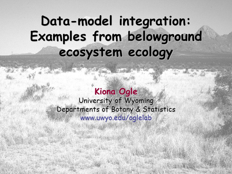 Data-model integration: Examples from belowground ecosystem ecology