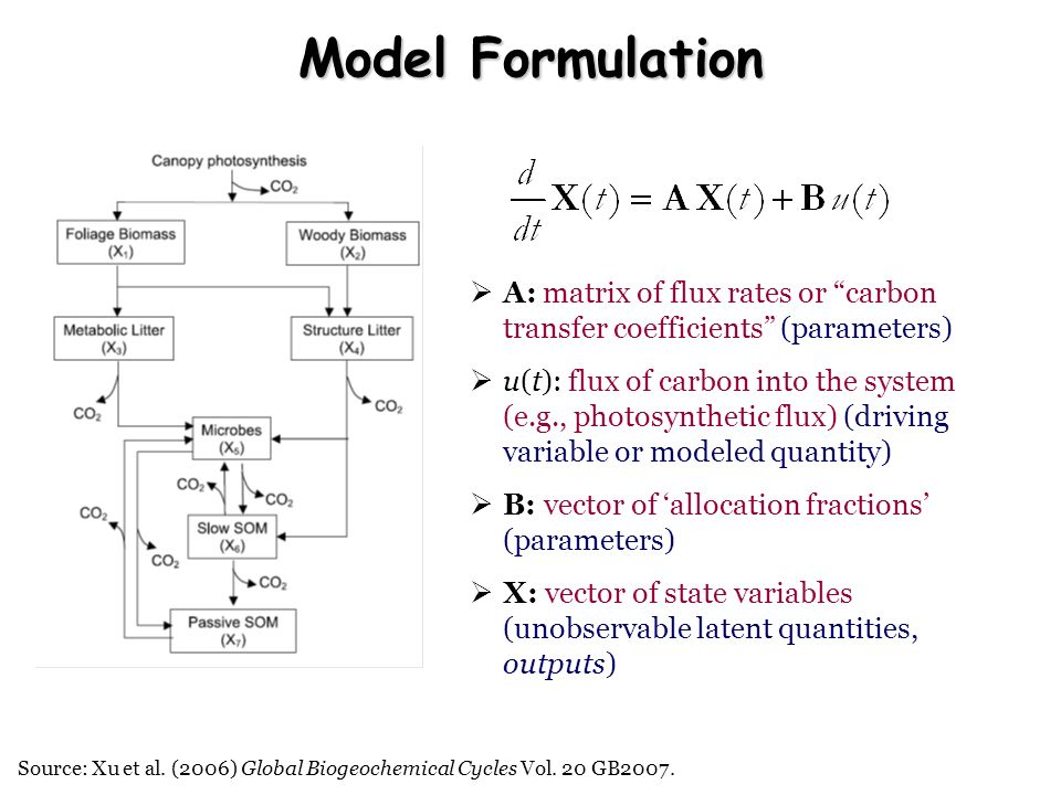 Model Formulation A: matrix of flux rates or carbon transfer coefficients (parameters)