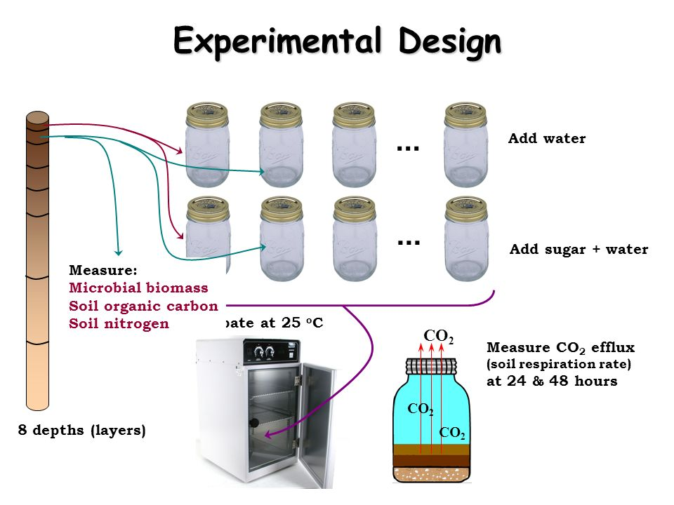 Experimental Design ... ... CO2 Add water Add sugar + water Measure: