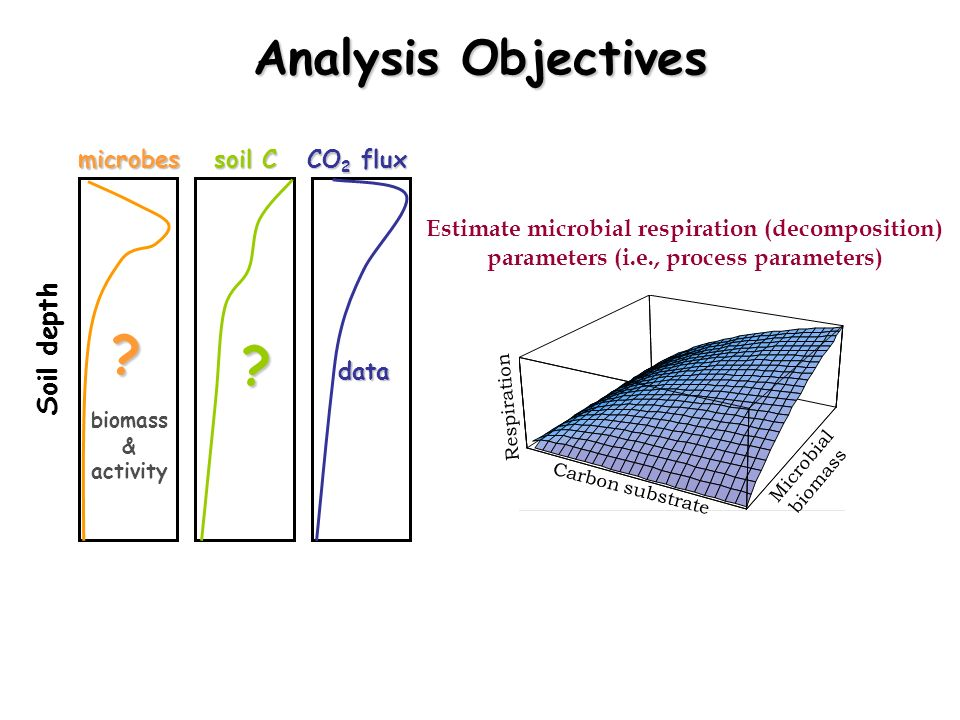 Analysis Objectives Soil depth microbes soil C CO2 flux