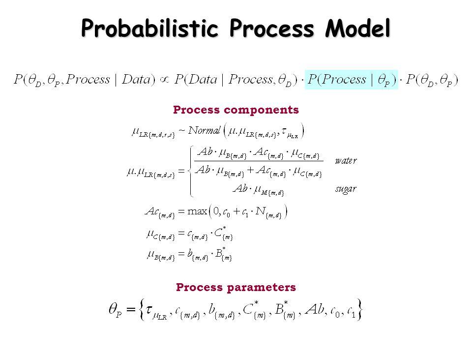 Probabilistic Process Model