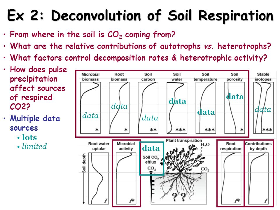 Ex 2: Deconvolution of Soil Respiration
