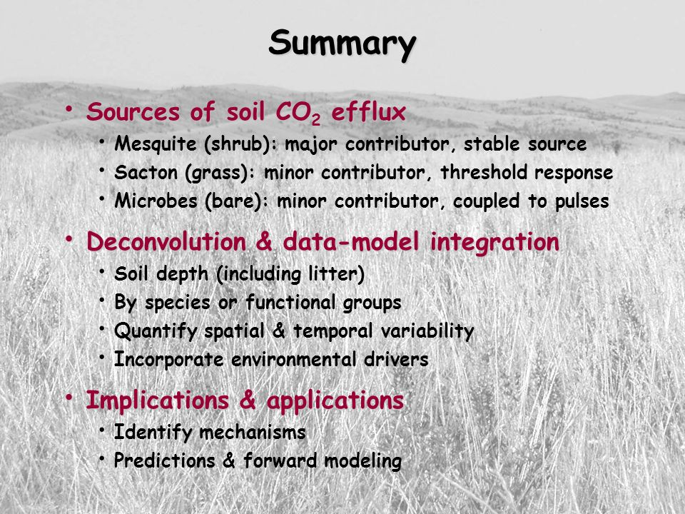 Summary Sources of soil CO2 efflux