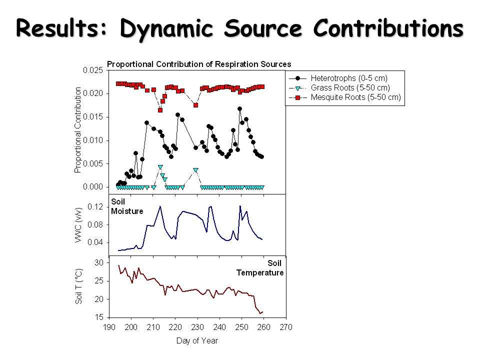 Results: Dynamic Source Contributions