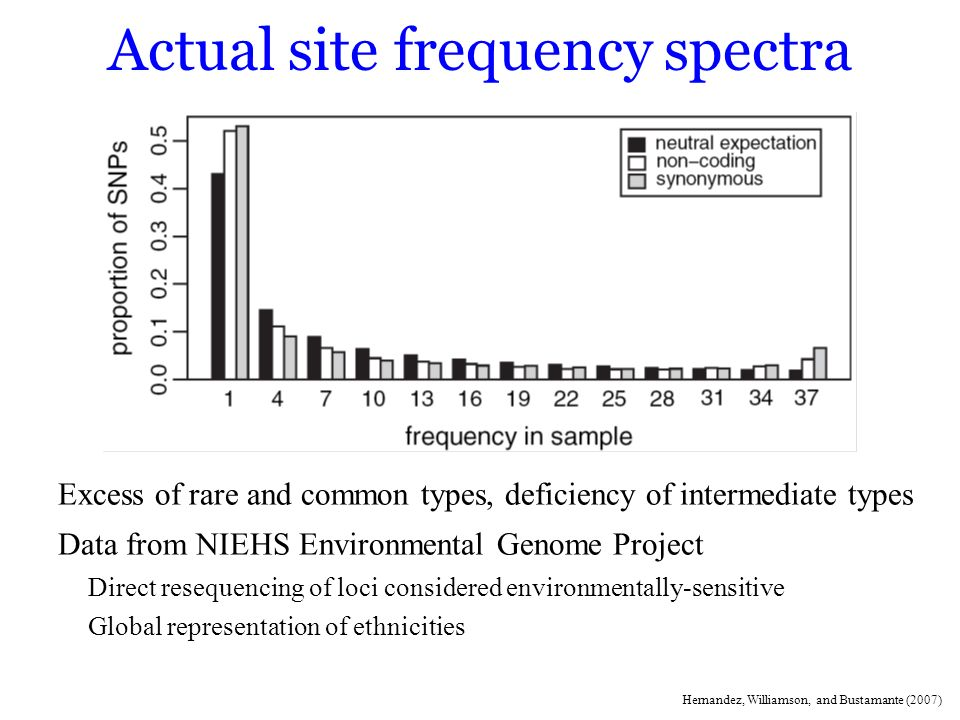 Actual site frequency spectra